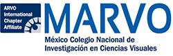 Labora - Medical and Laboratory